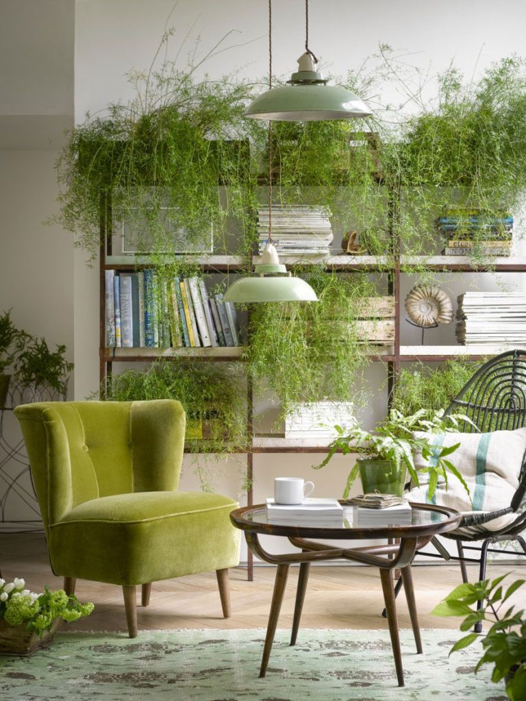 Planten_trend 2018-bron sofa.com-betty-armchair-in-olive-pure-cotton-matt-velvet-chaplin-coffee-table